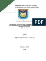 Proyecto Diana Carolina Arevalo 2018 (1)