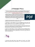 13 principios