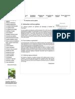 Spécialiste des Gabions électrosoudés, gabions tissés double torsion, gabions boîtes, gabion pré-remplis 5. Intéraction sol_mur gabion.pdf