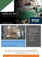 DESPOTE DE CANALES DE CARNE, CERDO, AVE Y RES