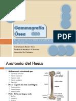 fdocuments.ec_gammagrafia-osea-55a0fb58db463