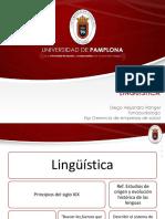 Linguistica- linguistica aplicada-