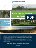 131837-Portuguese-Country-Forest-Note-Final-PORT
