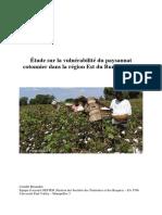 Vulnérabilité paysans du coton