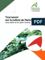 ITK-Provence-Haricot-2012