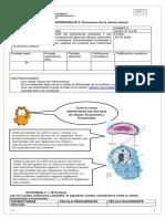 Guía de trabajo de Ciencias Naturales para Octavo Básico
