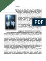 Opinia expertului + - TELE-satellite International Magazine
