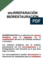 3. Biorreparación y Biorestauración