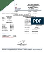 EGO IRVING.pdf
