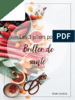 Ebook-3-piliers-pour-Briller-de-santé
