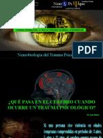 Neurobiologia Del Trauma Psicologico 12