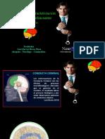 Perfil Criminal y Caracterización Psicológica del Delincuente Financiero