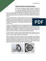 Carbón Pirolitico y Protesis de Válvulas Cardiacas