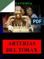 14- CFC - ARTERIAS DEL TÓRAX.pptx