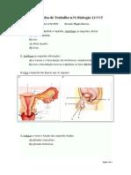 ficha1_bio12_ano1112.doc