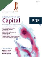 IHUOnlineEdicao537 fagocitose do capital.pdf