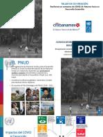 PNUD_Taller Co-creacioìn FINAL.pdf