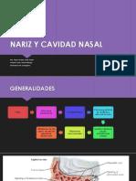 NARIZ Y CAVIDAD NASAL
