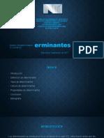 determinantespresentacionbenjamin-170909200617.docx