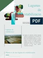 Lagunas de estabilizacion