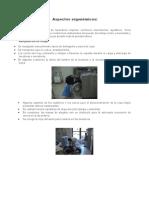 Documento 1 (2).docx ergonomia