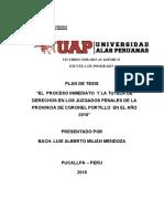 TESIS EL PROCESO INMEDIATO Y LA TUTELA DE DERECHOS - LUIS MILIAN - CORREGIDO.docx