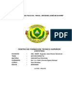 Accion-Directa.pdf