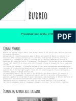 Budrio pp