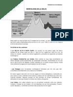 MORFOLOGIA DE LA SELVA.docx