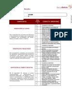 Competencias Gestionales-EJEMPLO DE GRADIENTE