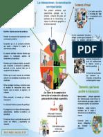 Mapa claves de la comunicacion e interaccion en la educacion a distancia  para un efectivo trabajo cooperativo