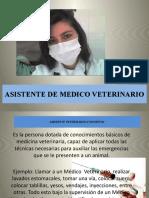 ASISTENTE DE MEDICO VETERINARIO