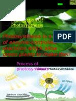 photosynthesis summary powerpoint