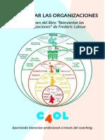 paradigma-organizaciones_completo.pdf