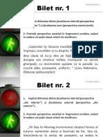 EVALUARE_ORALA_X_PERSP_NARATIVA_2
