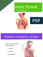 Respiratory System.ppt