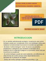 control-biologico-mediante-insectos-entomofagos..pptx