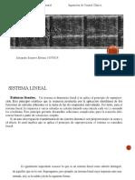 1.4 Sistemas Lineales