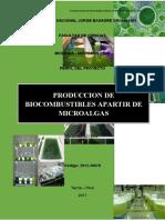 Produccion de Biocombustibles apartir de Microalgas