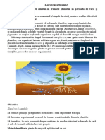 lucrare practică nr.2 biologie cl 9