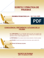 EXPOSICION DECRETO Y PRACTICA DE PRUEBAS.pptx