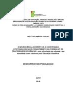 A NEUROCIÊNCIA COGNITIVA E A CONSTRUÇÃO EPISTEMOLÓGICA DO CONHECIMENTO NA FORMAÇÃO DE PROFESSORES DE CIÊNCIAS