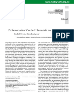 Profesionalización de Enfermería en México.pdf