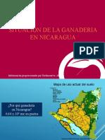 3-D-P-NICARAGUA
