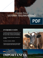 Examen-fisico-tegumentario.pptx