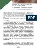 SARA AMARAL COELHO.pdf
