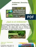 13 normatividad ambiental