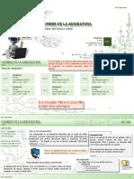 Plantilla_20.3 v2 (3).pptx