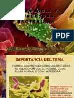 Estructura y morfología bacteriana - Q.C. Ricardo Ezequiel Keb Puc web