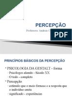 PERCEPÇÃO.pptx